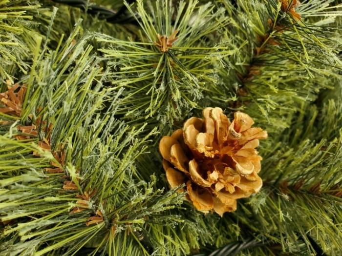 アルザスのクリスマスツリーの松ぼっくり