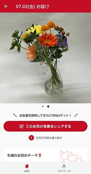 ブルーミーアプリのお花紹介