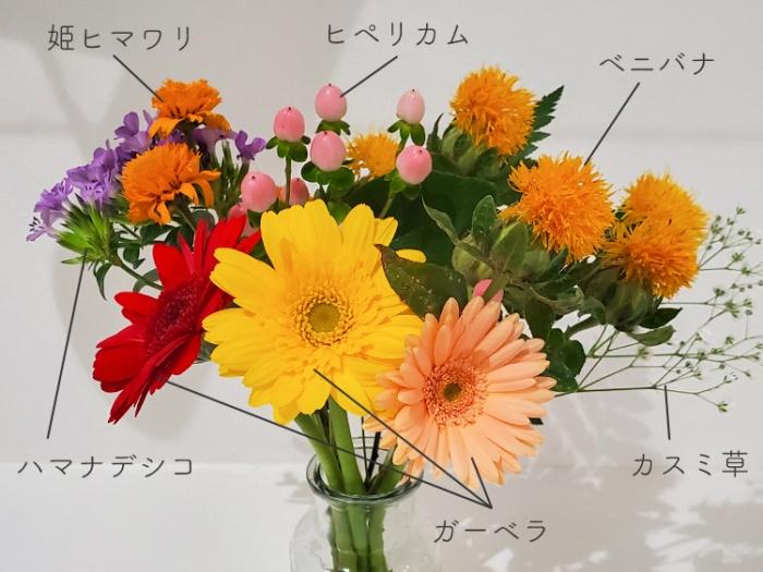 お花のサブスク「bloomee(ブルーミー)」から届いたお花