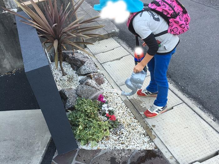 門柱前の植栽はコルジリネレッドスターとアイビーでロックガーデン風